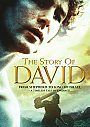 The Story of David: From Shepherd To King Of Israel - DVD