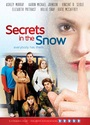 Secrets in the Snow - DVD