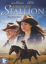 Midnight Stallion - DVD