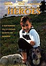 Little Heroes - DVD