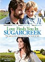 Love Finds You in Sugarcreek - DVD