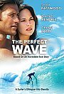 The Perfect Wave - DVD