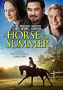 A Horse For Summer - VOD
