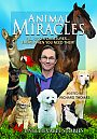 Animal Miracles - DVD