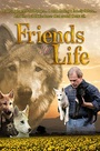 Friends For Life - VOD