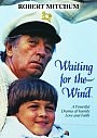 Waiting For The Wind - DVD