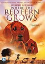 Where The Red Fern Grows - VOD