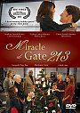 Miracle at Gate 213 - DVD