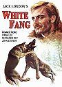 White Fang - VOD