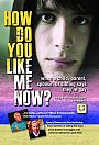 How Do You Like Me Now? - DVD