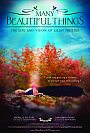Many Beautiful Things - DVD