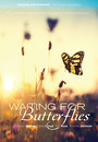 Waiting for Butterflies - VOD