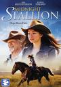 Midnight Stallion - VOD