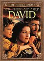 The Bible Stories: David - DVD
