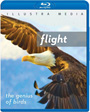 Flight: The Genius of Birds - Blu-ray